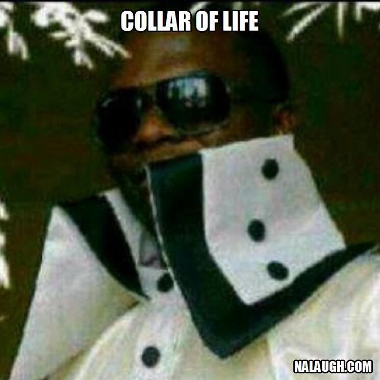collar update