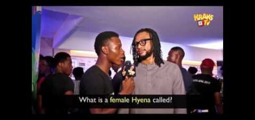Video: Kraks TV – What is a Female Hyena Called? (Part 2)