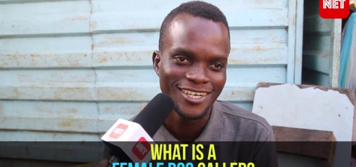 Video: Streetlove – What is a Female Dog Called?